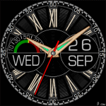 453 S Watch Face