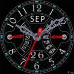 498 S Watch Face