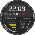 AMAZFIT VERGE 3 Watch Face