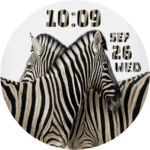 CWF Zebra Clock Face