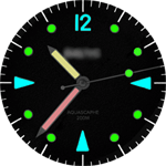 VM 224 Watch Face
